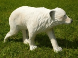 3D-Ziel Kleiner Eisbär laufend