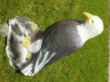 3D-Ziel Weißkopfseeadler sitzend